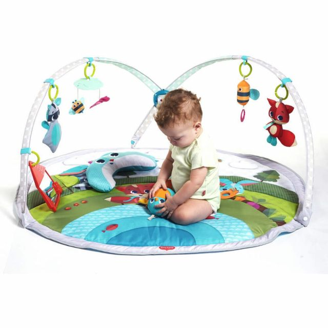 Tiny Love Playmat Dynamic Gymini™